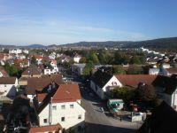 Waldsee_2